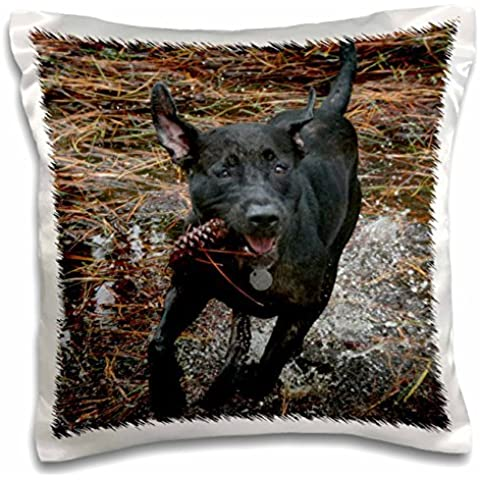 Susans Zoo Crew Animals Dog - Black lab dog running through water with pinecone - 16x16 inch Pillow