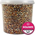 SQUAWK No Mess Seed Mix - All Year Round Premium Wild Bird Garden Food For Birds from SQUAWK