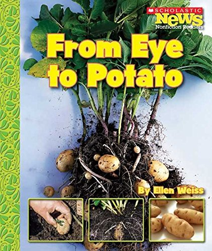 [(From Eye to Potato)] [By (author) Assistant Professor School of Architecture Ellen Weiss] published on (September, 2007)