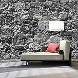 murando - Vlies Fototapete 500x280 cm - Größe Format XXL- Vlies Tapete - Moderne Wanddeko - Design Tapete - teine Stein Steinoptik 3D Mauer f-A-0493-x-d