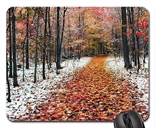 forest-in-two-seasons-winter-and-fall-mouse-pad-mousepad-forests-mouse-pad