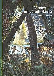 L'Amazone, un géant blessé