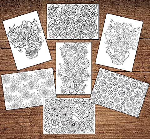 12 Adult Colouring Blank Floral Greeting / Birthdays Cards