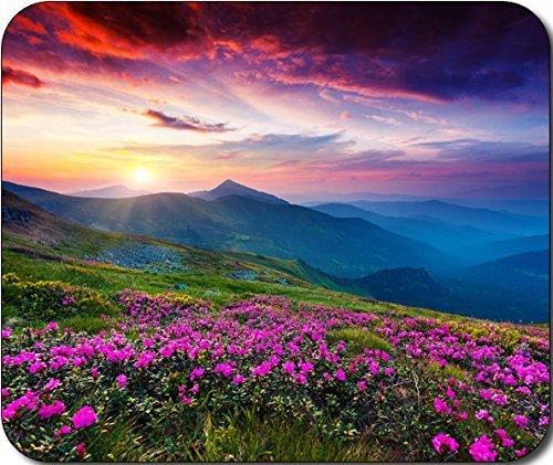 1-x-natura-fiori-viola-prato-mountain-tappetino-per-il-mouse-scenic-grande-idea-regalo