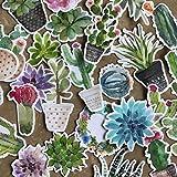 Stickers cactus e piante grasse - Adesivi per computer portatili - Stickers bambini e adulti - Decorazioni casa o per portatili PC - Kit adesivi per decorare varie superfici Navy Peony - 28 pezzi