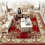 Aik@ Luxueuse Doux Résistant jusqu'à Effusion Tapis,Easy Clean Style européen Polypropylène Moquette Durable Rectangle Tapis Salon Office-J 300x400cm(118x157inch)