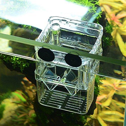 SENZEAL Zucht Isolation Box durchsichtig aus Plastik schwimmende Laichkasten mit 3 Stücke Tropfer für Aquarium Isolation(85x75x115mm)