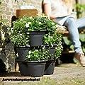 corsica vertical garden von Elho bei Du und dein Garten