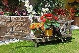 Schubkarre Holz, Gartendeko Karre zum Bepflanzen, Blumentöpfe, Pflanzkübel, Pflanzkasten, Blumenkasten, Pflanzhilfe, Pflanzcontainer, Pflanztröge, Pflanzschale, Schubkarren 80 cm HSOF-80-SCHWARZ Blumentopf, Holz, schwarz anthrazit dunkelgrau grau in amazon umweltfreundlich lasiert Holz unbehandelt Pflanzgefäß, Pflanztöpfe Pflanzkübel (auch hellgrau verfügbar)