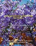 Außergewöhnliche Blütenwelt der Tropen Band 2: Bäume, Kletterpflanzen, Epiphyten