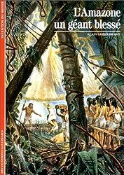 L'Amazone : Un géant blessé