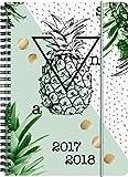 Brunnen 1072985088 Schülerkalender Ananas (1 Woche in 2 Seiten, August 2017 bis Juli 2018)