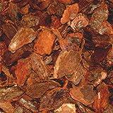 PALIGO Pinienmulch Pinienrinde Rindenmulch Pinie Mulch Garten Dekor Pinus Pinea Natur Mittelmeer Kiefer Deko 40-60mm 70l x 2 Sack (140l / 1 Karton)