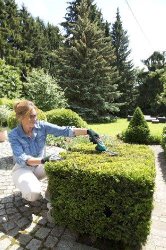 Bosch DIY Akku Gras- und Strauchscheren Set Isio - 3