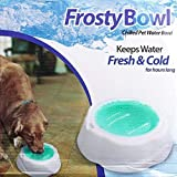 Harivar Mart Chilled Pet Water Bowl Pet Dog Cat Feeding Frosty Bowl Pet Bowl Stays Cool & Frosty For 8 Hours