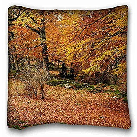 Personalized ( Nature Leaves landscapes trees park bench autumn fall ) Pillowcase Cushion Cover Design Standard Size 16x16 inches One Sides suitable for King-bed