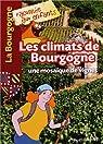 Les climats de Bourgogne : Une mosaïque de vignes