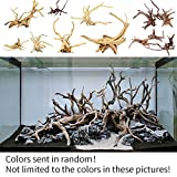 Aquarium Ornament, Holz natur Stamm Treibholz Baum Fisch Tank Pflanze Dekoration, zufällige Farbe