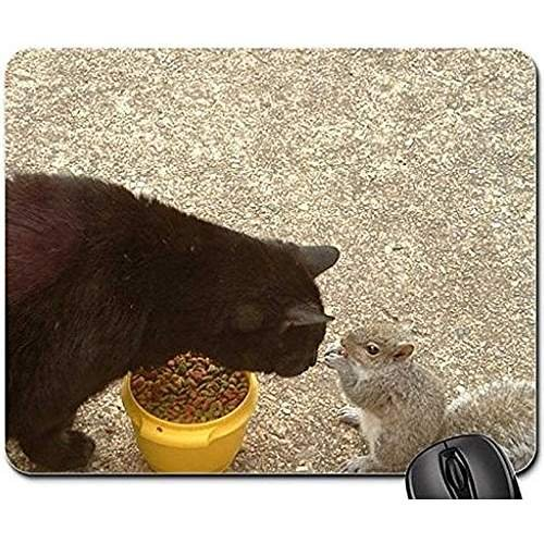 cat and squirrel Non-Slip Rubber Gaming Mouse Pad Size 9 Inch(220mm) X 7 Inch(180mm) X 1/8(3mm) (Cats Mouse Pad)