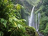 Fototapete Dschungelwasserfall Natur KT174 Größe: 350x260cm Natur Dschungel Tapete Wasserfall