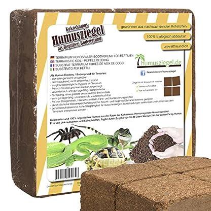 Humusziegel 1 block- 70 Coconut Litter for Reptiles, Terrarium Substrate, Terrarium Bedding, Ground Coconut, Tortoise… 1