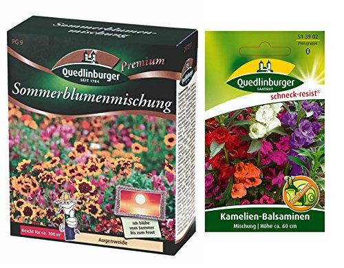 Mix di fiori estivi | 1x balsamina di camelia libera (resistente alla lumaca) | ora prezzo speciale invernale