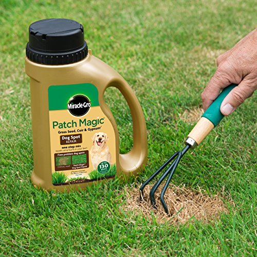 Miracle-Gro Patch Magic Dog Spot Repair 1293g