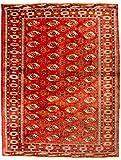 Morgenland Afghan BUCHARA Teppich 229 x 174 cm Rot Handgeknüpft Wollteppich