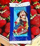 Spezial-Erdbeeren & Beeren-Erde, 15 Liter-Sack