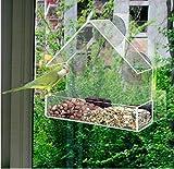 Arpoador Perspex Window Bird Feeder