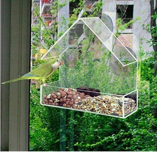 fenster vogelhaus Fenster-Vogelfutterstation von Perspex
