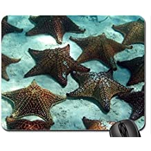 Starfish on Ocean Bed Mouse Pad, Mousepad
