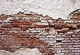 Welt-der-Träume Fototapete Tapete Wandbild Abgenutzte Alte Rote Mauer | P4 (254cm. x 184cm.) | Photo Wallpaper Mural 10182P4-MS | Imitation Ziegel Mauer Backsteine Beton