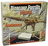 Dig Out Dinosaurier-Skelett Fossil Paläontologie Archäologie Ausgraben für Kinder ~