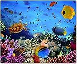 Tapis de souris/Mouse Pad en textile avec dos en caoutchouc antidérapant pour tous types de souris Motif: La mer avec poissons et récif corallien unterwasseraufn ahme–006
