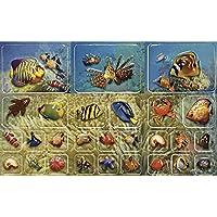 RAYHER 78534003d Pop-Up-BTL Stickers, pesci, SB. Scheda
