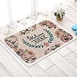 MKSFY Rutschfeste Absorbierende Bodenmatte Tür Matte Draht PVC Teppich Matte für Badezimmer Küche Studie Schlafzimmer Korridor Eingangstür Wohnzimmer, 45 cm * 75 cm