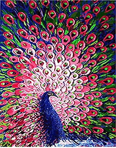Preisvergleich Produktbild [Holzrahmen] Malen nach Zahlen Neuerscheinungen Neuheiten - DIY Gemälde durch Zahlen, Malen nach Zahlen Kits- Pavone  16x20 inch