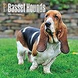Basset Hounds - Bassets 2017 - 18-Monatskalender mit freier DogDays-App: Original BrownTrout-Kalender  (Wall-Kalender) hier kaufen