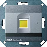 Gira 260728 Keyless In Fingerprint System 55, anthrazit