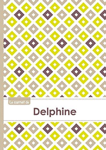 Le carnet de Delphine - Lignes, 96p, A5 - Carr Poussin Gris Taupe