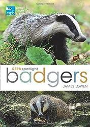 RSPB Spotlight: Badgers by James Lowen (2016-06-16)