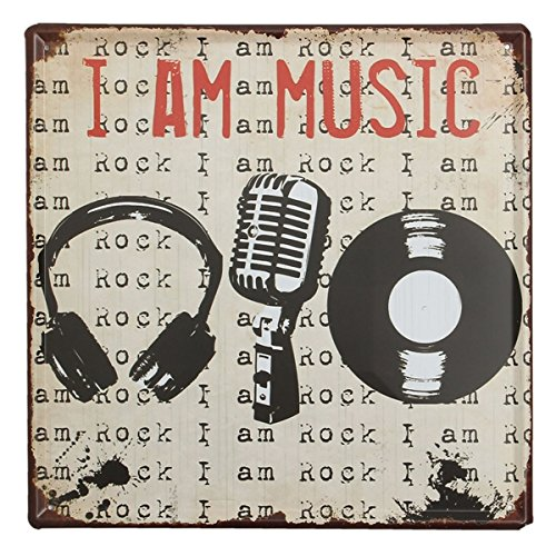 Bluelover Musica Tin segno Vintage metallo placca Poster Bar Pub Casa Wall Decor