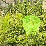 iTemer Telescopic Handle Butterfly Catcher Net Insect Net Mesh Garden Tools Toys Kids Children