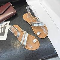 MingXinJia Sandalias Sandalias para Mujeres Bohemia Sandalias para Estudiantes Zapatos Romanos Goma Tacón Bajo (1-3Cm) Tacones Planos Todos Los Días Zapatos Viscosos, Plata, 39