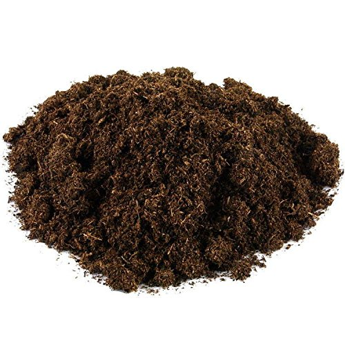 Mykorrhiza special beech 250ml