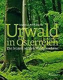 Urwald - Österreichs letzte wilde Waldparadiese - Matthias Schickhofer
