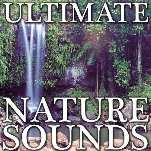 Nature Sound Stream 10