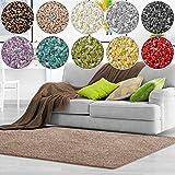 Shaggy Teppich Bali | weicher Hochflor Teppich für Wohnzimmer, Schlafzimmer und Kinderzimmer | mit GUT-Siegel | verschiedene Größen | viele moderne Farben (140 x 200 cm, beige)