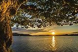 Artland Qualitätsbilder I Alu Dibond Bilder Alu Art 30 x 20 cm Landschaften Gewässer See Foto Orange C9AR Herbst am schönen Bodensee Segelboot im Sonnenuntergang